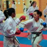 Angeliqa Mejstedt Karate