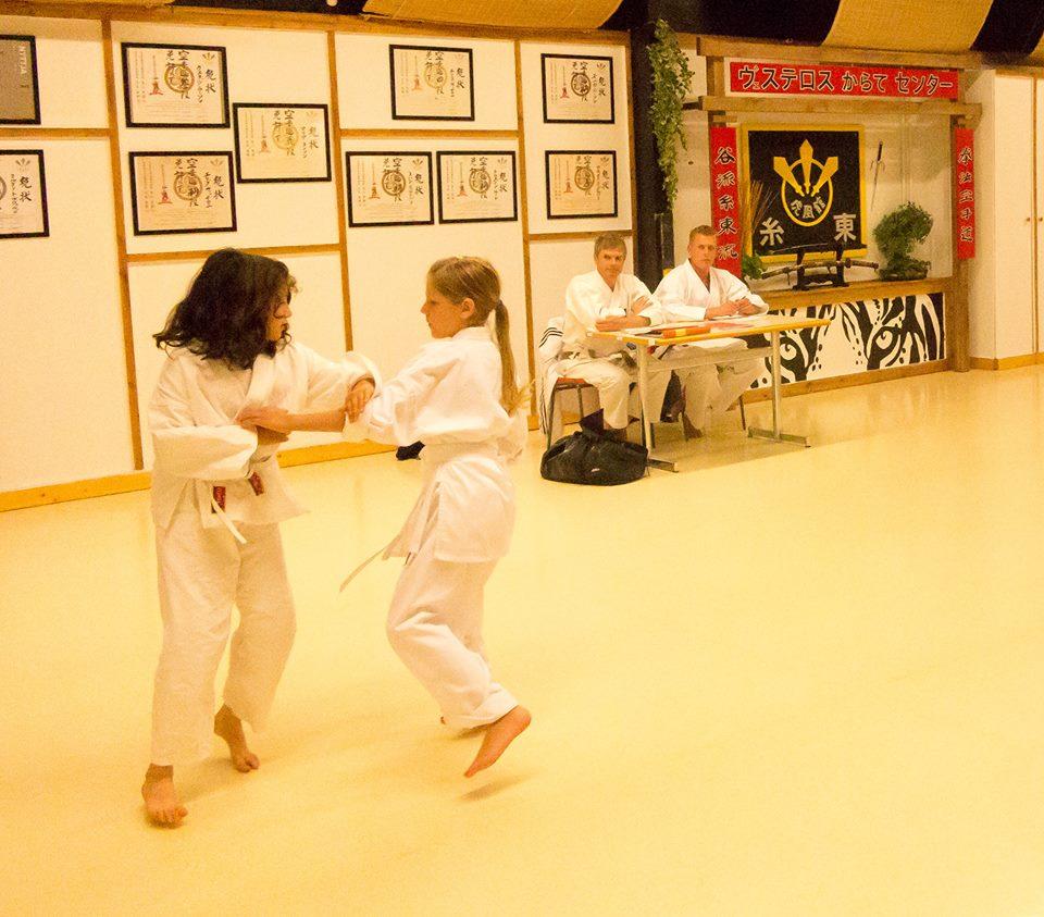 barngruppen graderas på Västerås Karatecenter