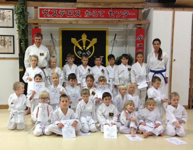 västerås karatecenter graderingen 2013