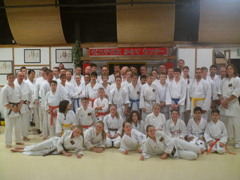 avancerade gruppen på västerås karatecenter