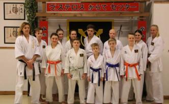 Tävlingstruppen ligger i hårdträning på Västerås Karatecenter