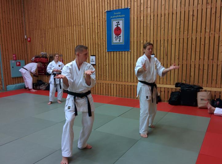 Enrico och Gustav Papuren - Norrköpingslägret HT2014